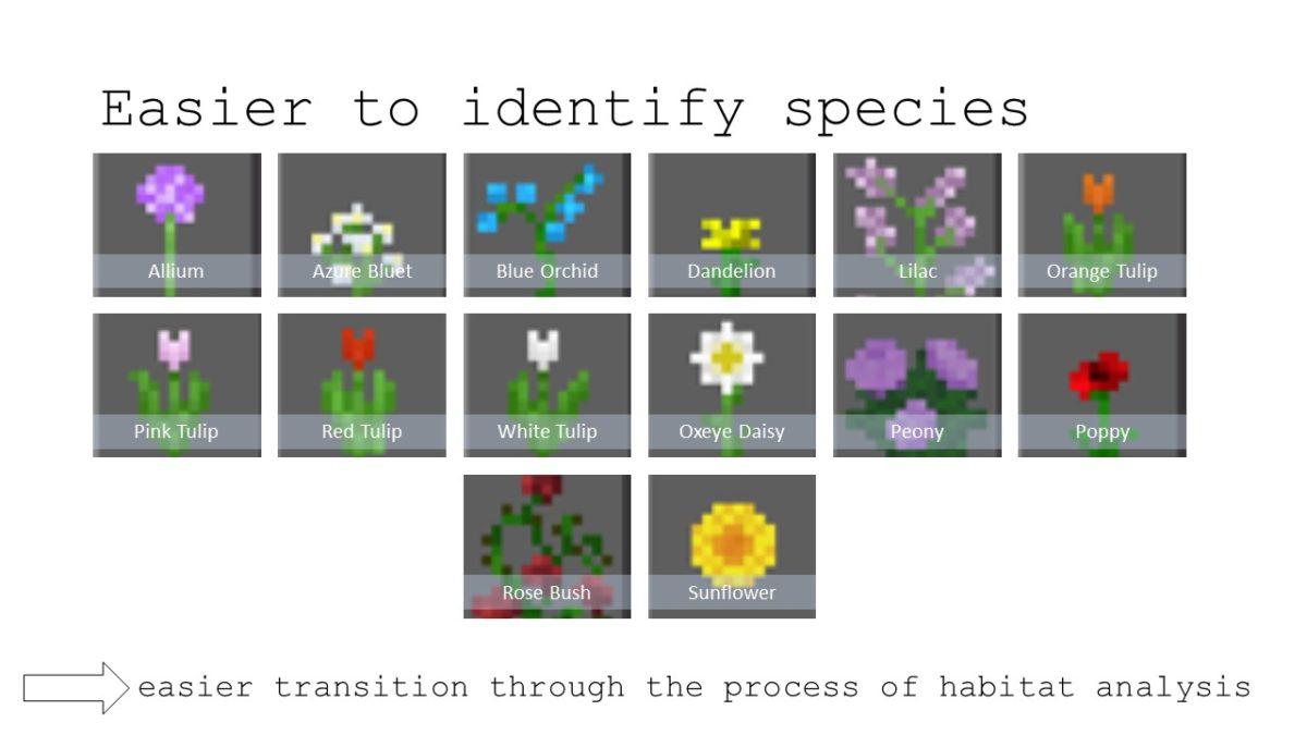 Sample species created in Minecraft