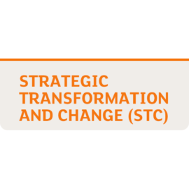 Transform Lunches – Using Labour Market Insight for Portfolio Development