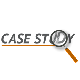 Digital Excellence Impact Case Studies